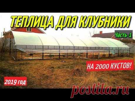 ТЕПЛИЦА ДЛЯ КЛУБНИКИ-2019г/Теплица своими руками на 2000 кустов клубники.