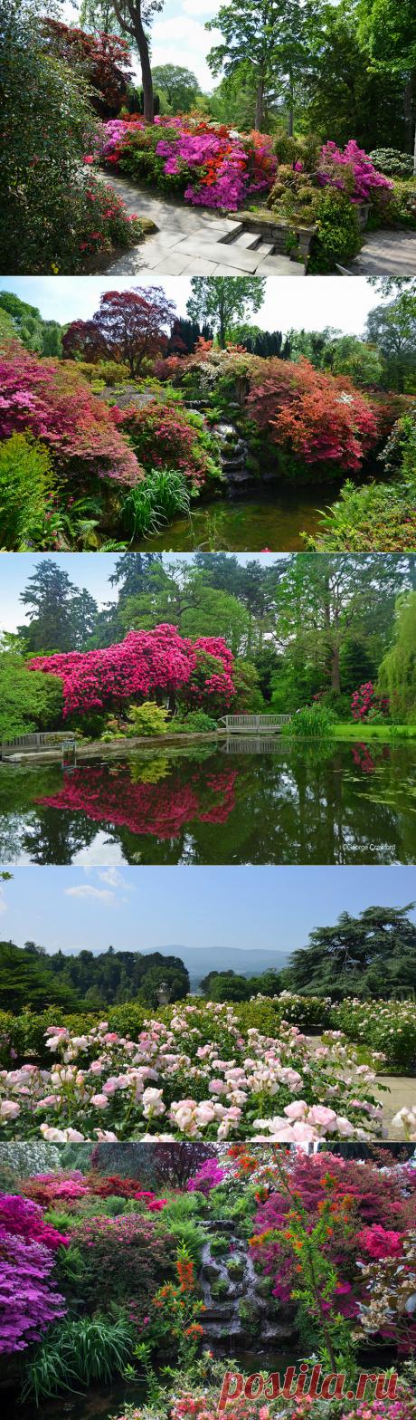 Bodnant of the Garden (Bodnant Garden), Great Britain.