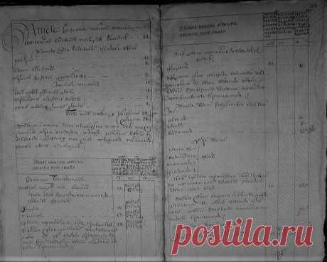 Третья ревизия починок Боневский - Как написать историю своей семьи?
