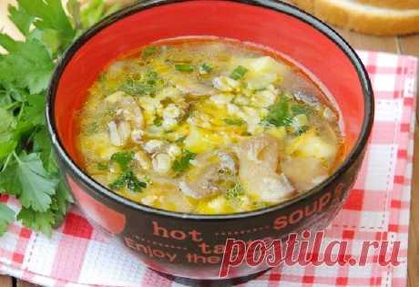 Овсяный суп с грибами Из сытной овсяной крупы можно сделать не только вкусные выпечки и завтраки, но и полноценный обед. Предлагаю взять себе на заметку этот рецепт, и приготовить в домашних условиях овсяный суп с грибами! Грибы отдают супу свой потрясающий аромат, а овсянка сделает его более сытным.