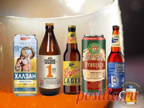 Пять видов хорошего нефильтрованного пива отечественного производства   С Миру по Пиву!   Яндекс Дзен
