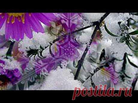 (+1) тема - Прелюдия зимы | ВИДЕОСМАК