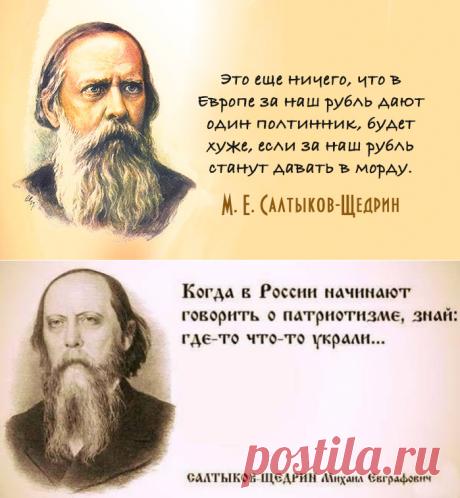 26 поразительно современных цитат Салтыкова-Щедрина — Болтай