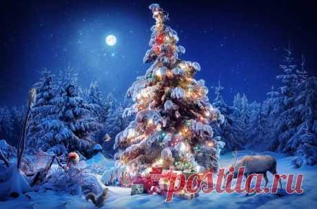 """Новогодние и Рождественские гадания - большая коллекция - гадание на новый год, рождество и """"старый новый год"""""""