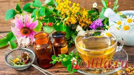 Чем полоскать горло при боли и какие растворы для полоскания горла эффективнее?