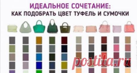 Полезная шпаргалка: какой цвет туфель подойдет к вашей сумочке 📌 Сохраните, чтоб не потерять! 35 различных вариантов: