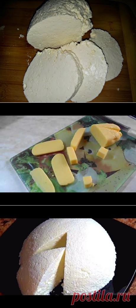 (21) Домашний творог из магазинного молока (cheese ) - YouTube