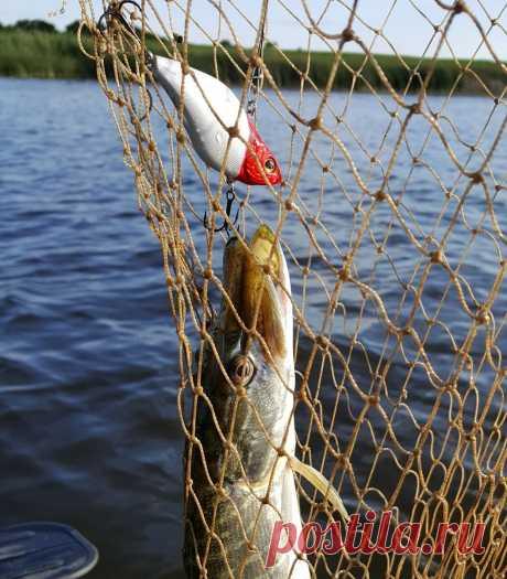 Какой будет рыбалка после снятия всех ограничений!