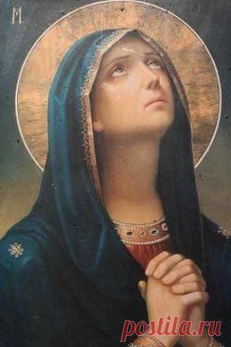 Я прошу, я Господа молю...  Мне подарков, почестей не надо...  Только пусть живут, кого люблю...  И всегда со мною будут рядом...
