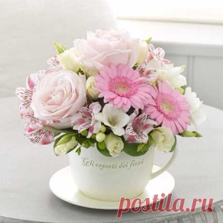 Pinterest - Букет в чашке | Красивые букеты / Beautiful bouquets