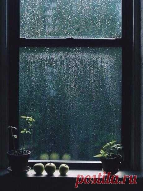 Люблю дождь - он приносит с собой запах неба.  Макото Синкай