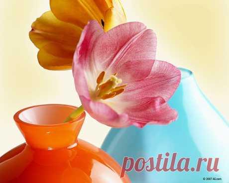 Обои для рабочего стола: Тюльпаны в вазе 960x800