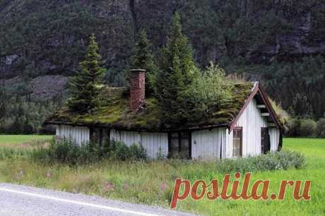 Живые крыши домов в Норвегии. - Путешествуем вместе