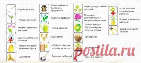 El calendario de luna de siembra para 2018 año