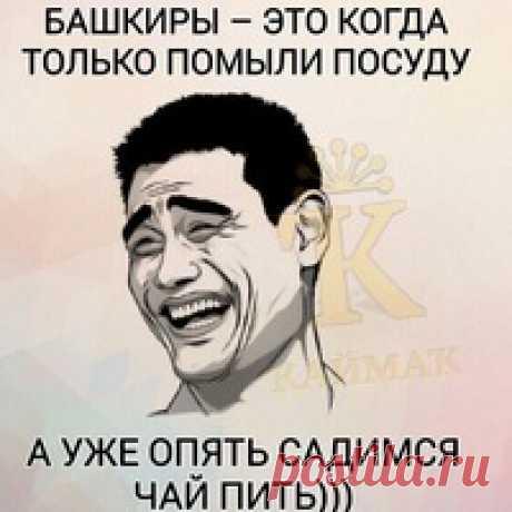 Гульшат Дрозд