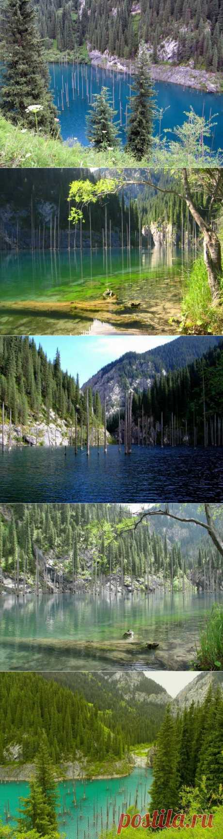 (+1) - Озеро Каинды. Казахстан | ТУРИЗМ И ОТДЫХ