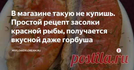 В магазине такую не купишь. Простой рецепт засолки красной рыбы, получается вкусной даже горбуша | MyFlowersDream.ru | Яндекс Дзен