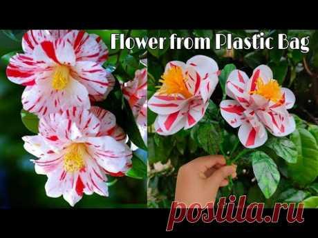 Как сделать цветок камелии из полиэтиленового пакета | Цветочные ремесла