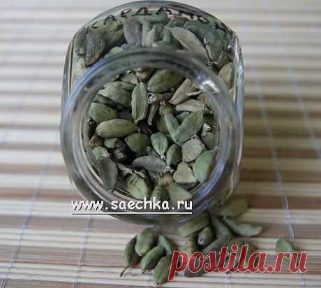 Кардамон | Saechka.Ru - рецепты с фото