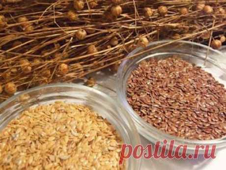 Полезные свойства семян льна, рецепты   Правила здоровья и долголетия