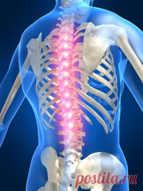 Упражнения для спины от Шамиля Аляутдинова
