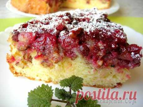 El pastel de Boston de bayas rojas del Norte