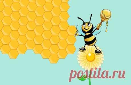 Усмиряем гипертонию: Горчичное масло и продукты пчеловодства помогут человеку нормализовать давление   Будем здоровы   Яндекс Дзен