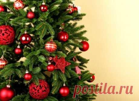 Когда убирать елку после Нового года : приметы, советы, как правильно выбрасывать, по народным поверьям