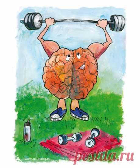 Продукты улучшающие работу мозга - Питайтесь правильно - Саморазвитие, успех - Жизнь на все 100%