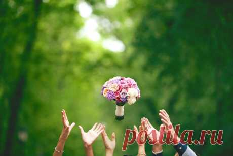Что делать с букетом невесты, который поймала на свадьбе
