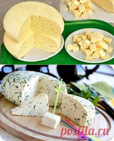 Top-15 recipes of preparation of cottage cheeses