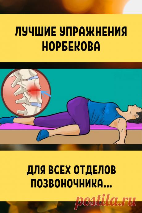 Лучшие упражнения Норбекова для всех отделов позвоночника...