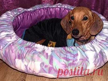 Мастер-класс смотреть онлайн: Делаем лежанку для собаки | Журнал Ярмарки Мастеров