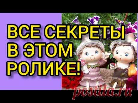 Рассада ПЕТУНИИ по дням!//Все секреты от А до Я!