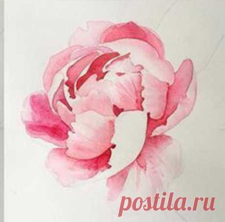 Рисуем цветок акварелью
