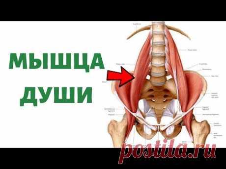 Как расслабить поясничную мышцу | Psoas release
