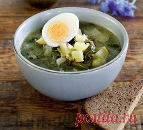 Зеленые щи, суп.