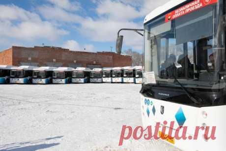 В России перестанут высаживать из транспорта детей, не оплативших проезд Правительство одобрило соответствующий законопроект.
