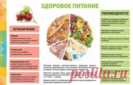 ПП обед. Рецепты для худеющих, ежедневное меню на неделю, из овощей, мяса, молочных продуктов