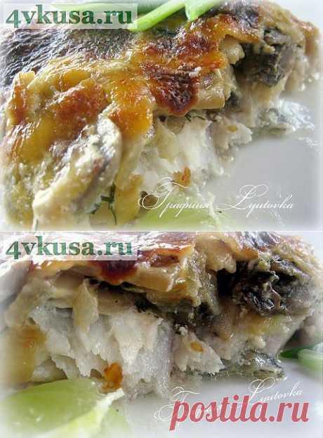 Судак с грибами под сырно-сливочным соусом | 4vkusa.ru