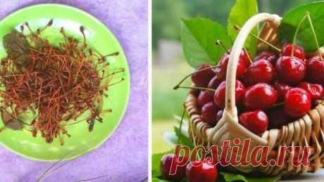 Плодоножки вишни и черешни — знаменитое лекарство для лечения и профилактики многих болезней! — Бабушкины секреты