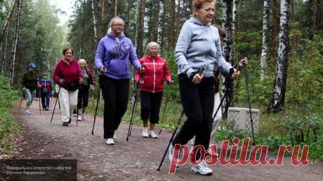 Ученые усомнились в пользе ежедневной продолжительной ходьбы пешком Ученые подвергли сомнению теорию о том, что для поддержания хорошей физической формы необходимо проходить десять тысяч шагов ежедневно.