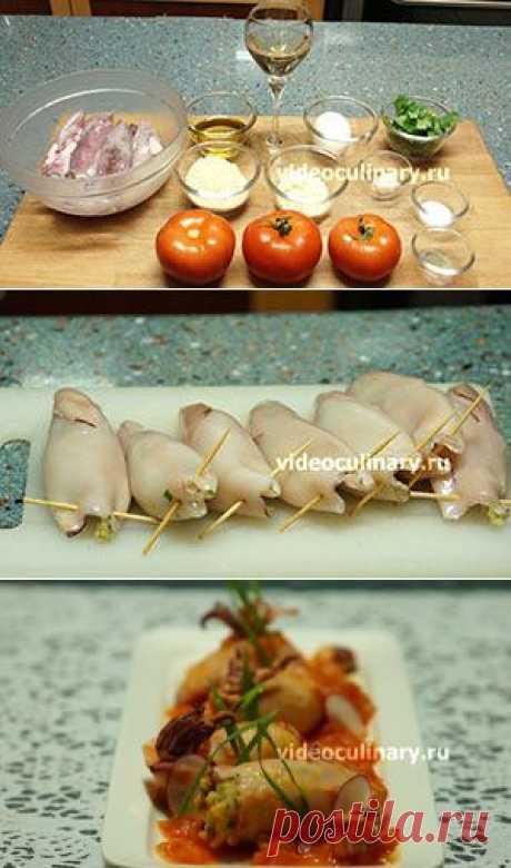 Фаршированные кальмары в томатном соусе - Видеокулинария.рф - видео-рецепты Бабушки Эммы
