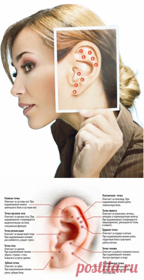 Правильно трем уши, снимает отеки, худеем и омолаживаем организм. | Идеальная | Яндекс Дзен
