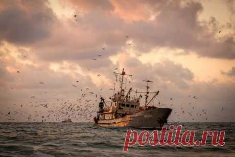 Судно «Восход», Чёрное море. Автор фото: Алексей Яковлев.