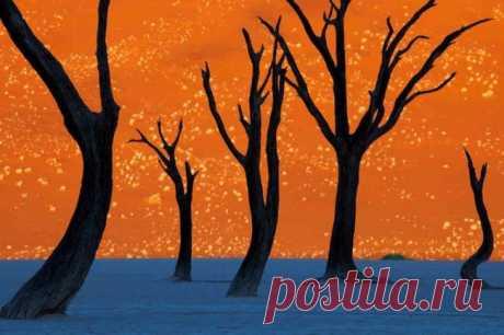 Этот потрясающий снимок был сделан на рассвете в Намибии. Фотограф Франс Лентинг говорит: «Фотография была сделана в тот самый момент, когда утреннее солнце еще не достигло своей наивысшей точки и освещало дюны, на другой же их части отражается чистое голубое небо».