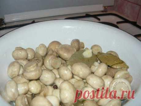 Маринуйте грибы сами  Ингредиенты: - 1 кг шампиньонов - 2 зубчика чеснока - 2 столовые ложки соли - 4 столовые ложки уксуса - 1 столовая ложка сахара - лавровый лист - перец