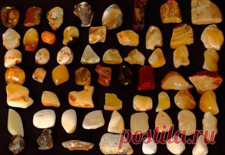Янтарь – все виды, свойства и самые ценные оттенки янтаря