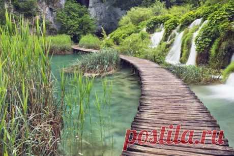 Плитвицкие озёра - Самые живописные парки мира - образ жизни | msn