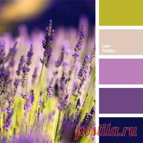 Color Palette Ideas   Page 392 of 393   ColorPalettes.net